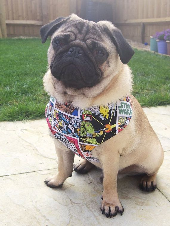 Pug Dog Harness Star Wars Custom Made Soft Dog Harness Dog