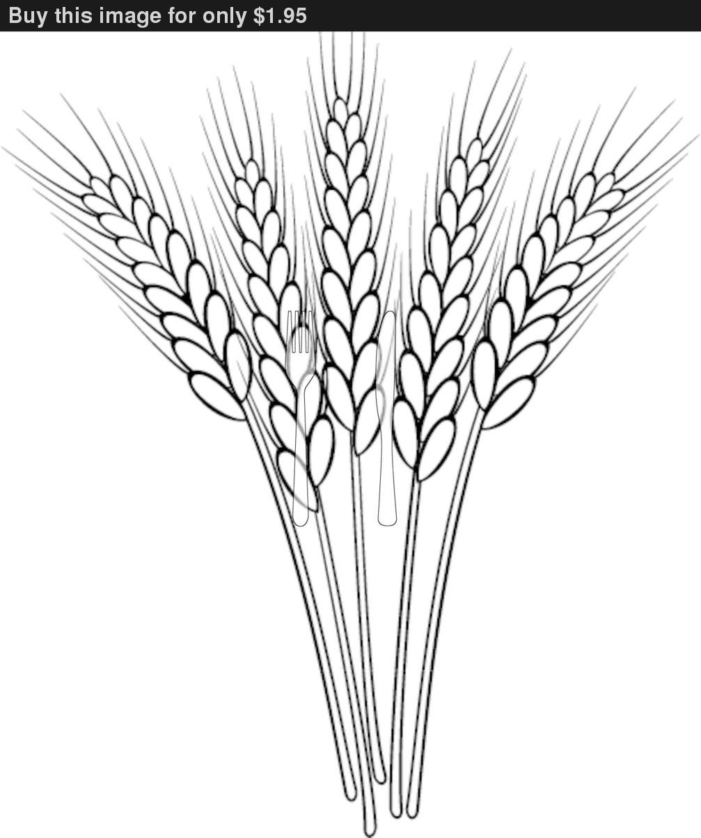 Free Wheat Cliparts, Download Free Clip Art, Free Clip Art on Clipart  Library