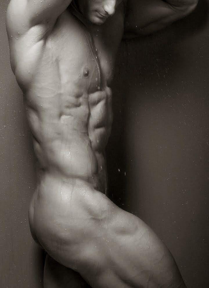 tumblr_mbvnooyI1P1rhwdcco1_1280.jpg (720×990) | anatomy | Pinterest ...