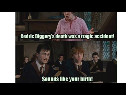 Pin By Thepuggieone On Harry Pottah Harry Potter Day Harry Potter Memes Harry Potter Jokes