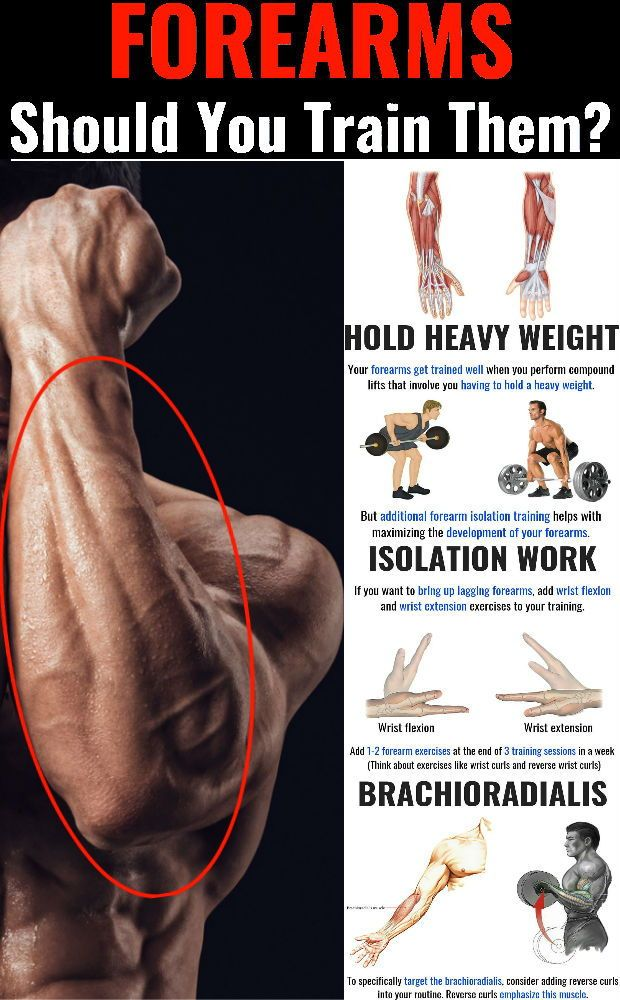 4 Powerful Workouts For Bigger Forearms - GymGuider.com