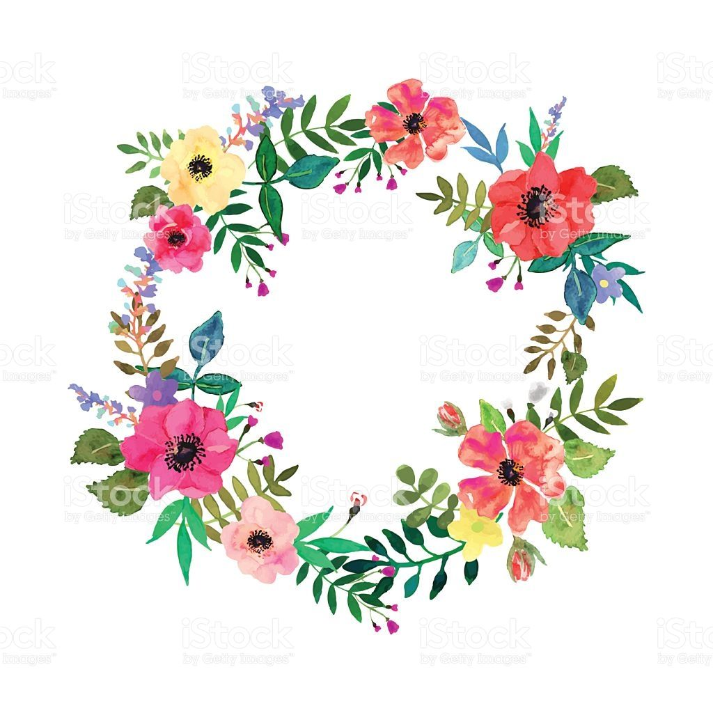 vector flowers set elegant floral collection with isolated leaves rh pinterest com free vector flower border free vector flower border