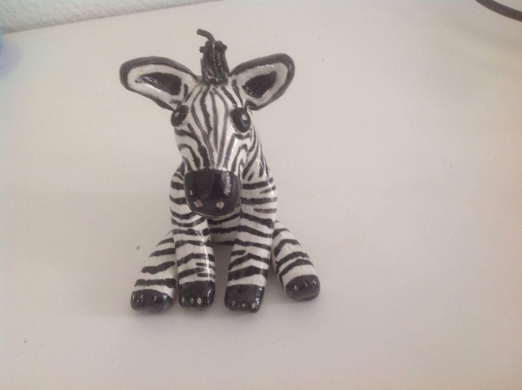 My funky Zebra