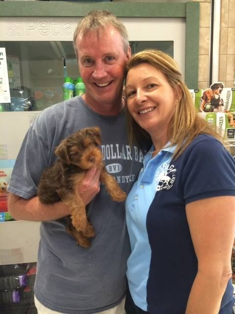 Petland Novi Michigan Detroit Novi Pet Dogs Puppies Happy New Home