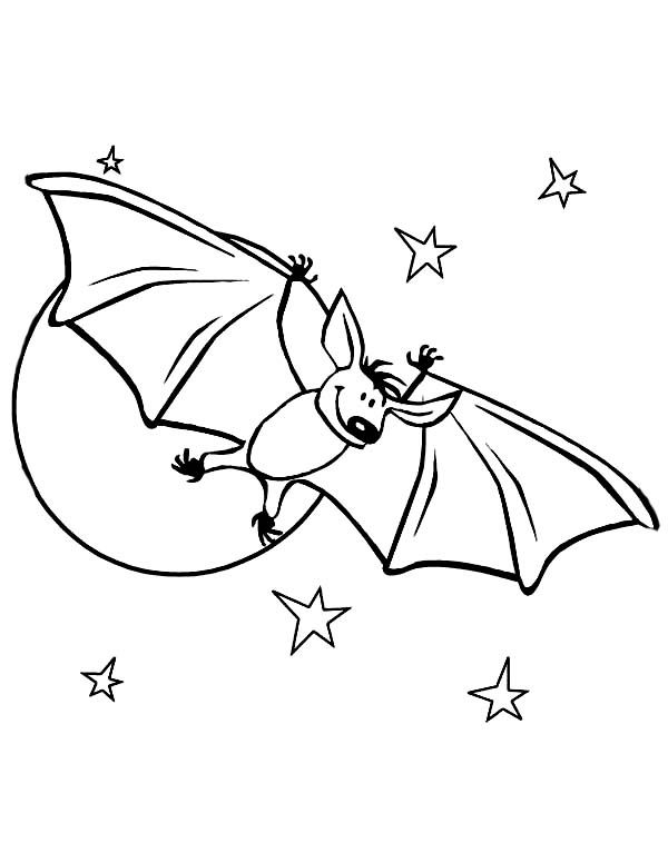Bats Outline Coloring Page For Adjectives Used To Describe Other