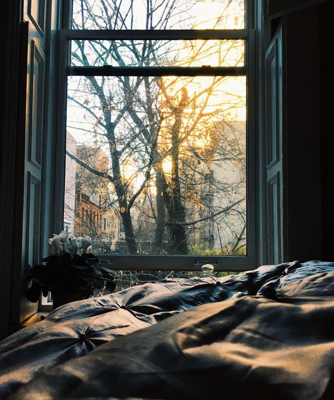 「Winter morning light ✨」