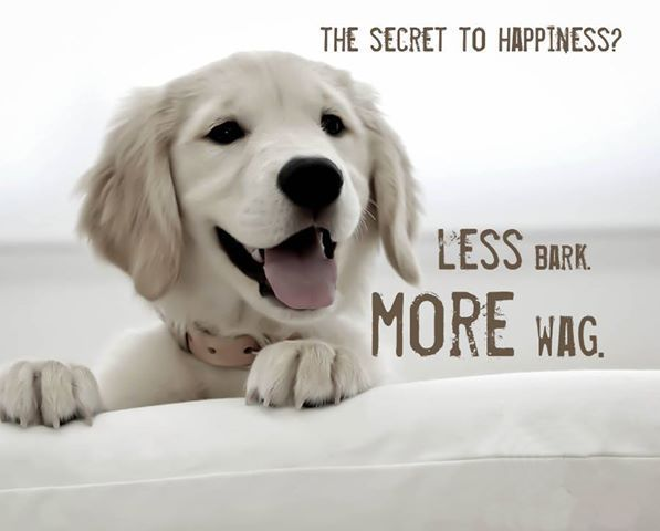 The Secret to Happiness..:-) :-)