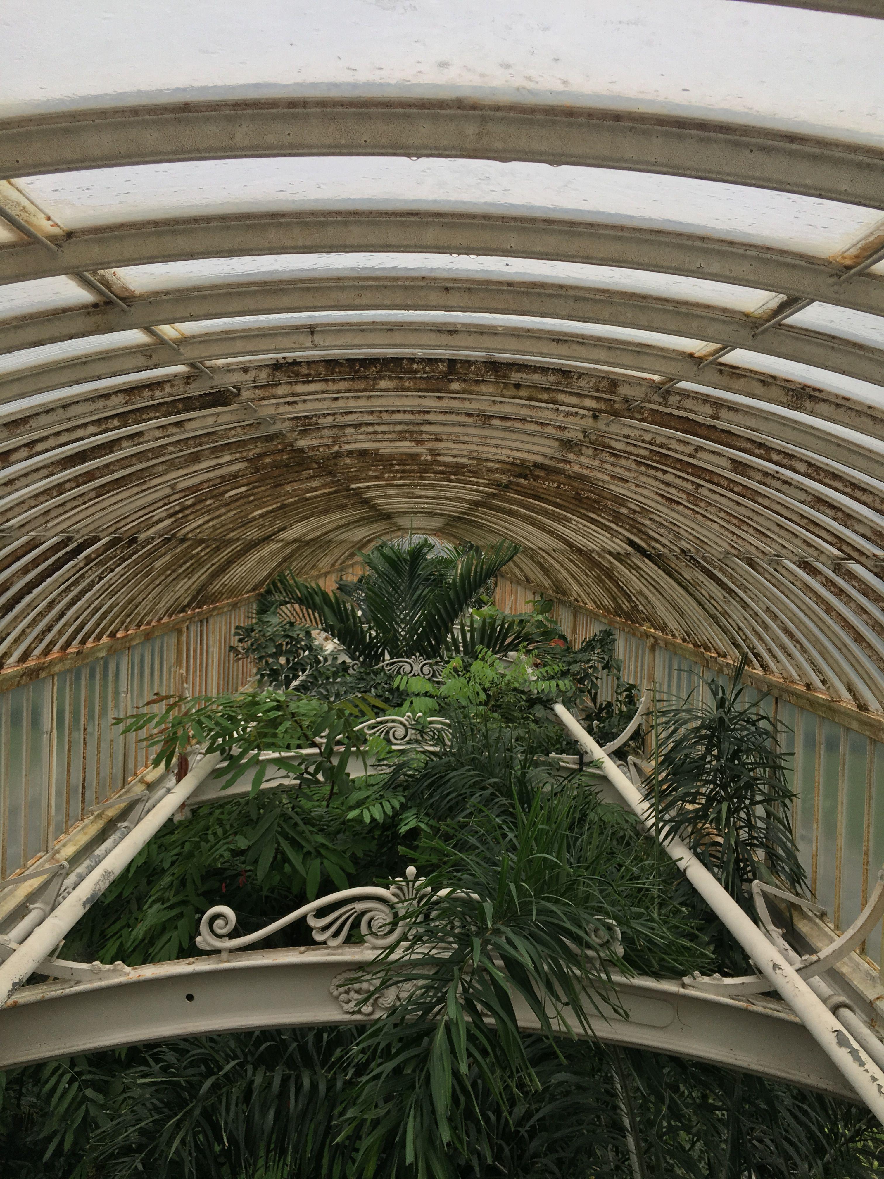 Pin by Isabel Thompson-Whiteside on KEW GARDENS | Pinterest | Kew ...