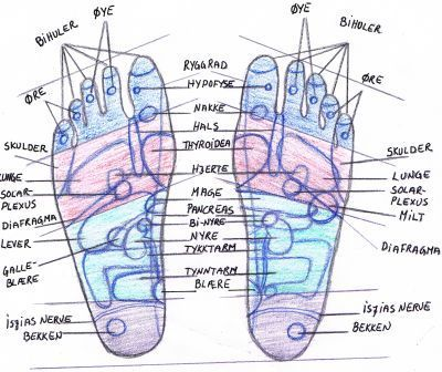 Fotsoneterapi Reflexology Mage Sports Acupressure Points Frisk Healing Alternative