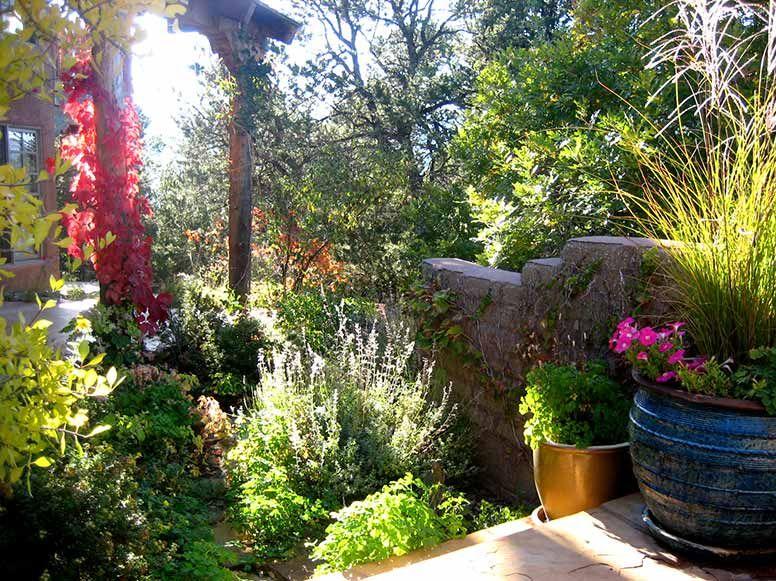 New Gardening Ideas new mexico gardening | songbird garden1 | outside ideas