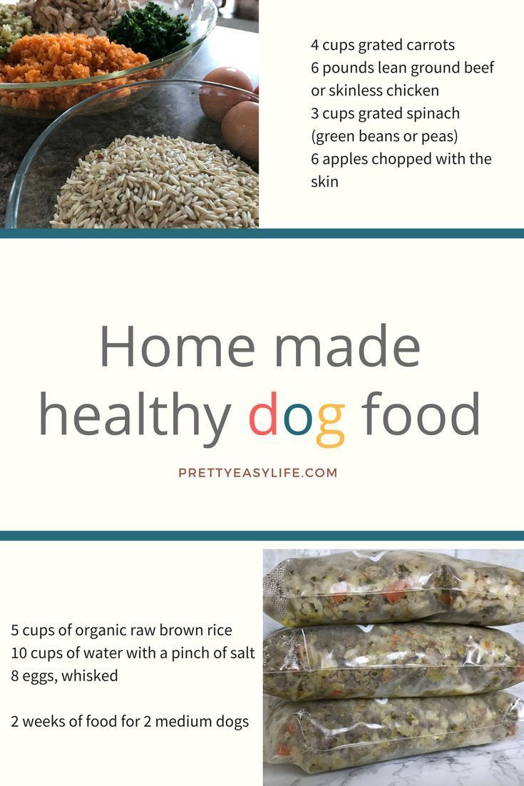 Enjoy watching your dog eating this yummy and healthy food! It is ...