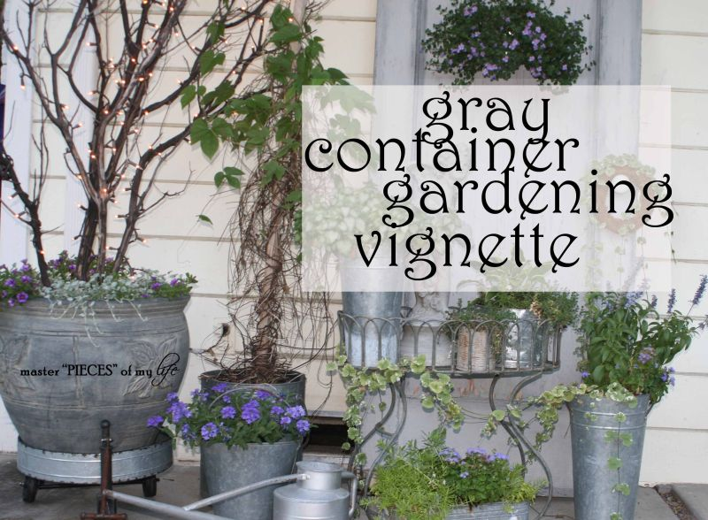 Gray container gardening, Galvanized buckets, florist vases and a feed container here to name a few. Some are old some are new to make up this lovely vignette!!