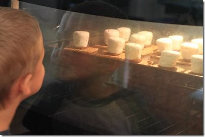easy indoor s'mores treat - fun for a camping theme