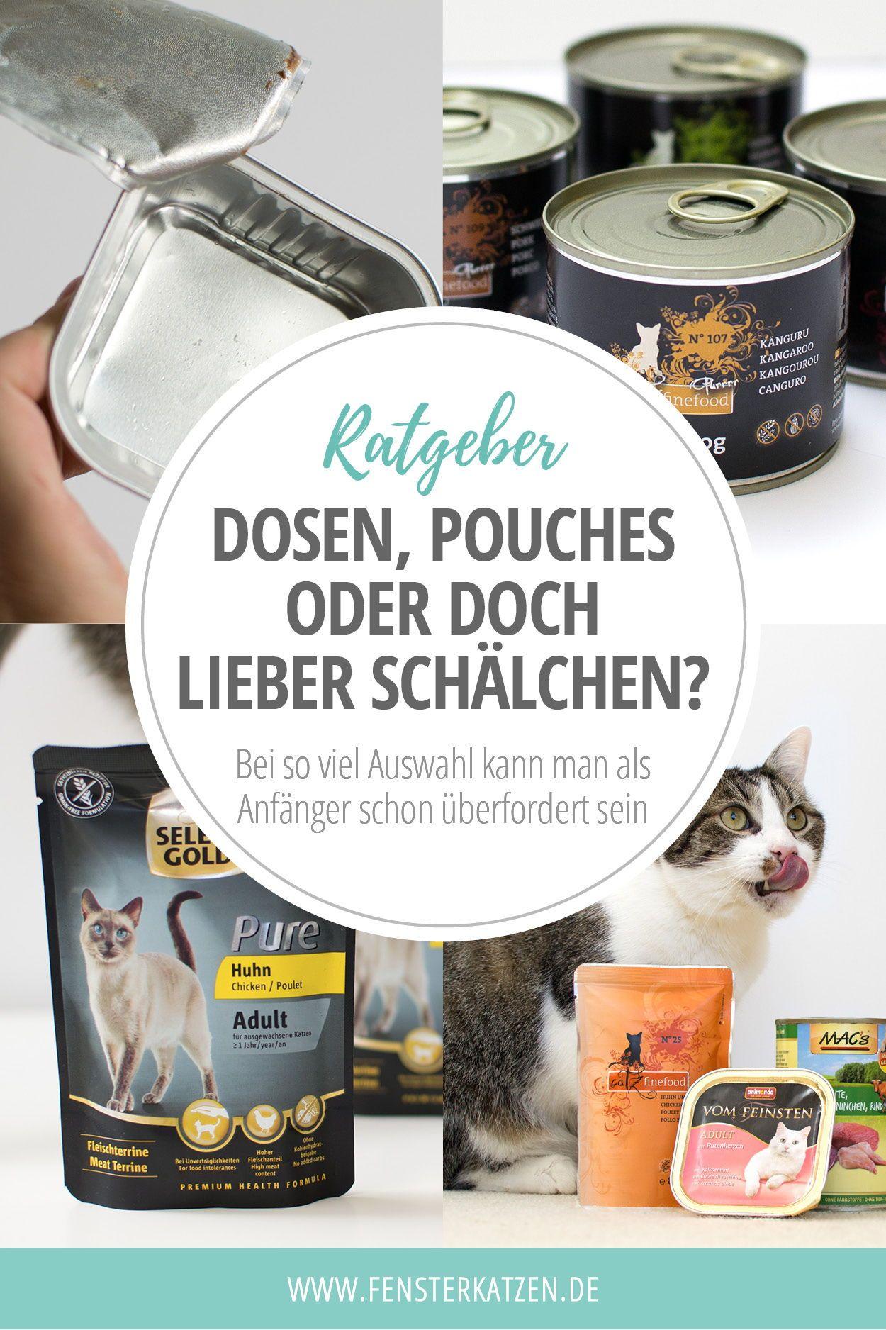Dosen Pouches Oder Doch Lieber Schalchen Ratgeber Katzenhaltung Katzen Schale