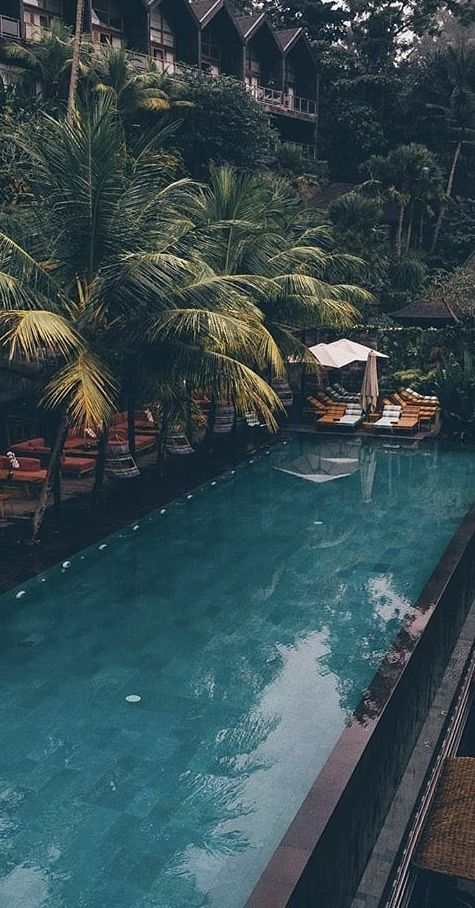COMPLETE GUIDE: JUNGLE FISH UBUD, BALI - Instagram Heaven!
