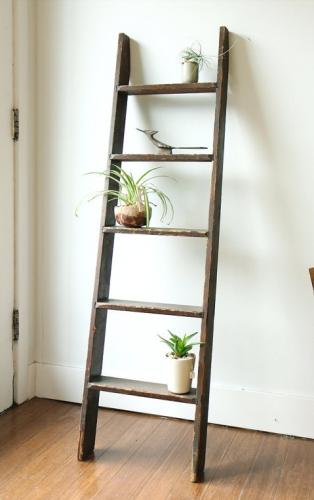 la plante comme objet d co ideas cactus succulents garden pinterest salle de bain salle. Black Bedroom Furniture Sets. Home Design Ideas