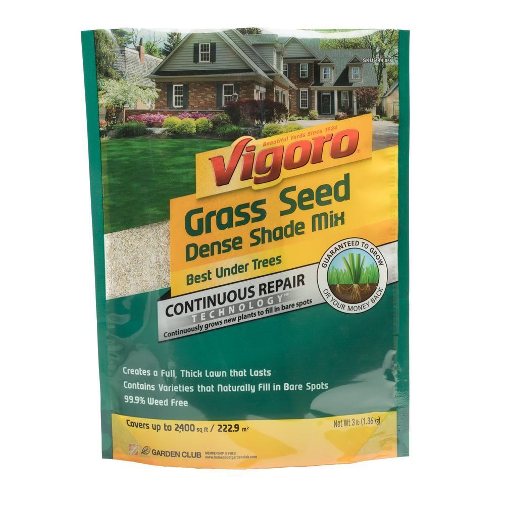 Vigoro 3 Lb Dense Shade Grass Seed Mix 52225 The Home Depot Shade Grass Grass Seed For Shade Grass Seed