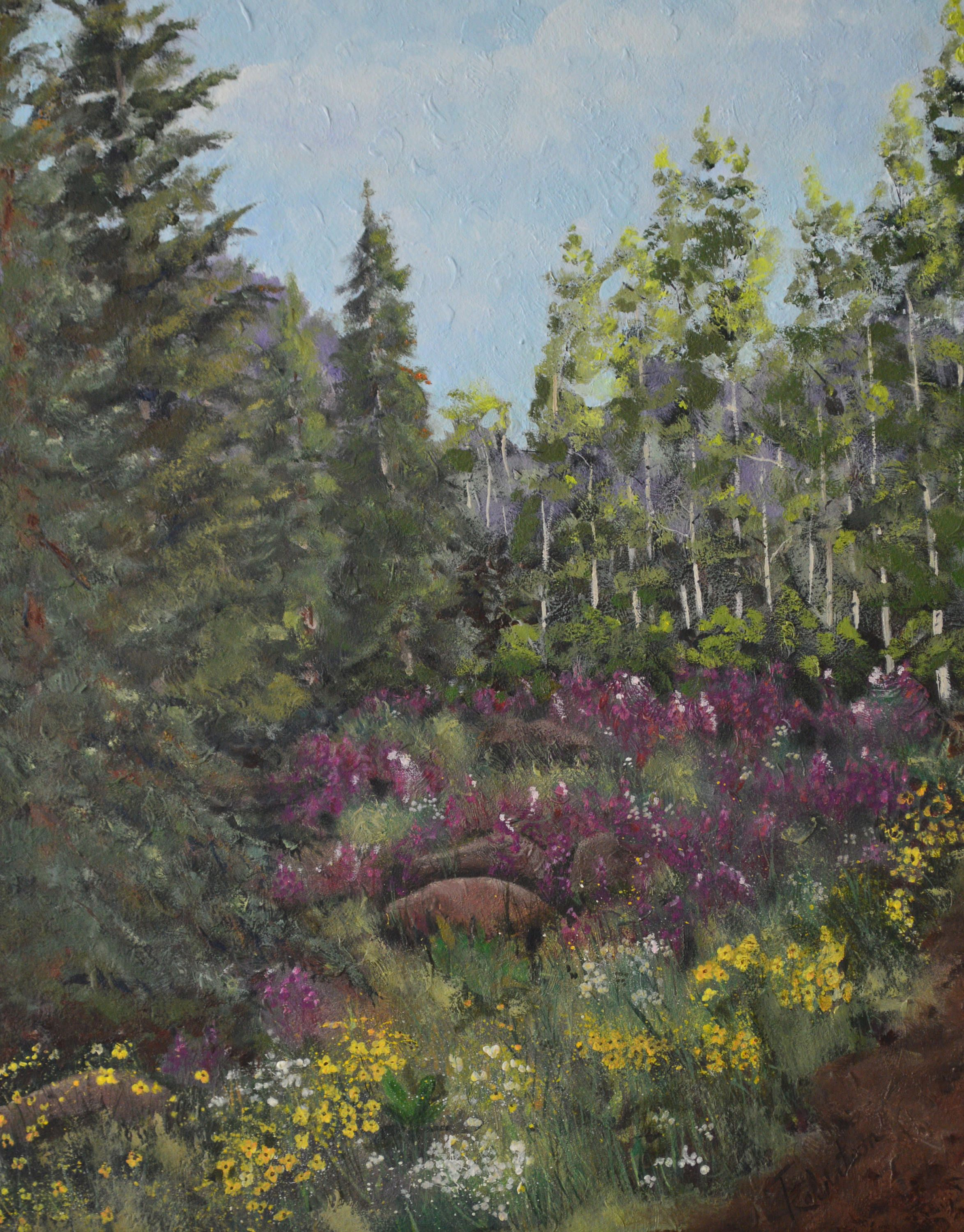 Original Landscape Oil Painting Fine Art Colorado Framed Forest And Mountain Painting Aspen Tree And Spruce Art Oil Painting Landscape Landscape Paintings Fine Art Landscape