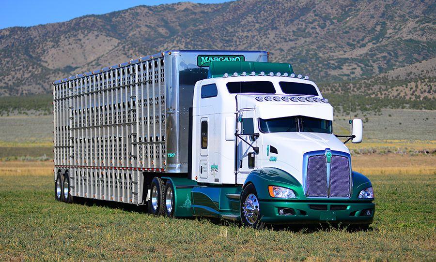 Custom Kenworth Cattle Truck Custom Trucks Kenworth