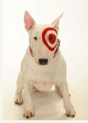 Target dog Famous dogs, Most cutest dog, English bull