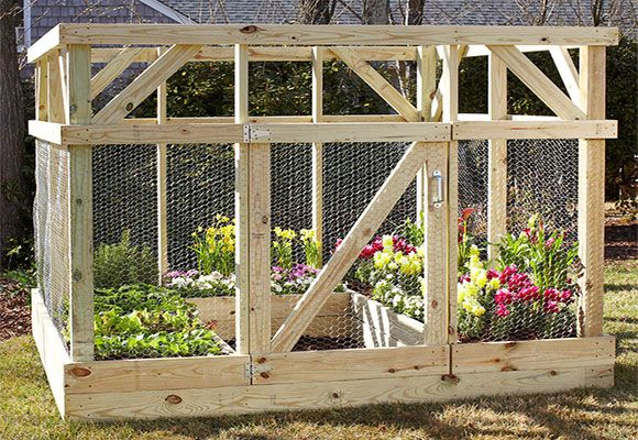 Build An Enclosure To Protect Your Garden Diy Raised Garden