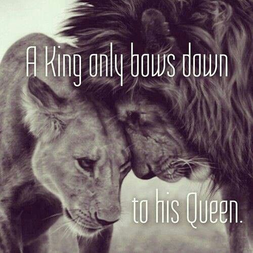 Lion King Love Quotes: Lion King And Queen Quote From Facebook