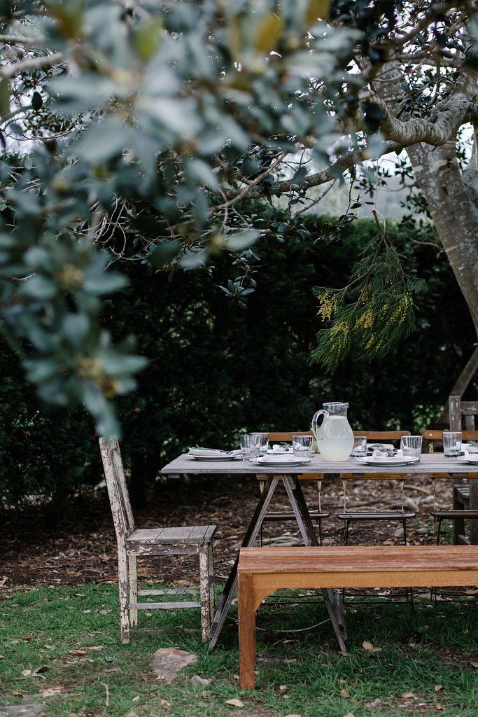 Decorando una mesa especial, decorar con plantas