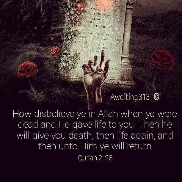 Quran 2:28