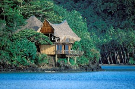 ~Live in the Tropics ♥
