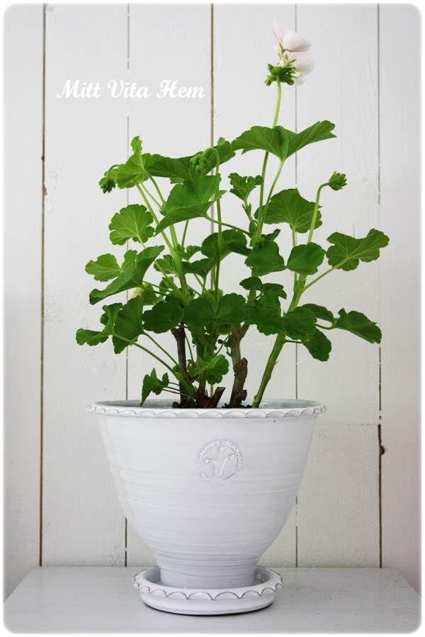 sturehof kruka keramik Pinterest Indoor flowers, Planters - ideen für küchenwände