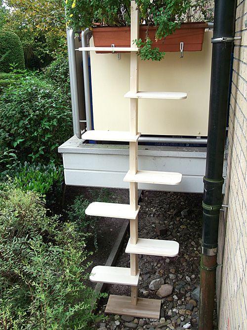 cat ladder f r katzen pinterest katzen katzentreppe und die katze. Black Bedroom Furniture Sets. Home Design Ideas