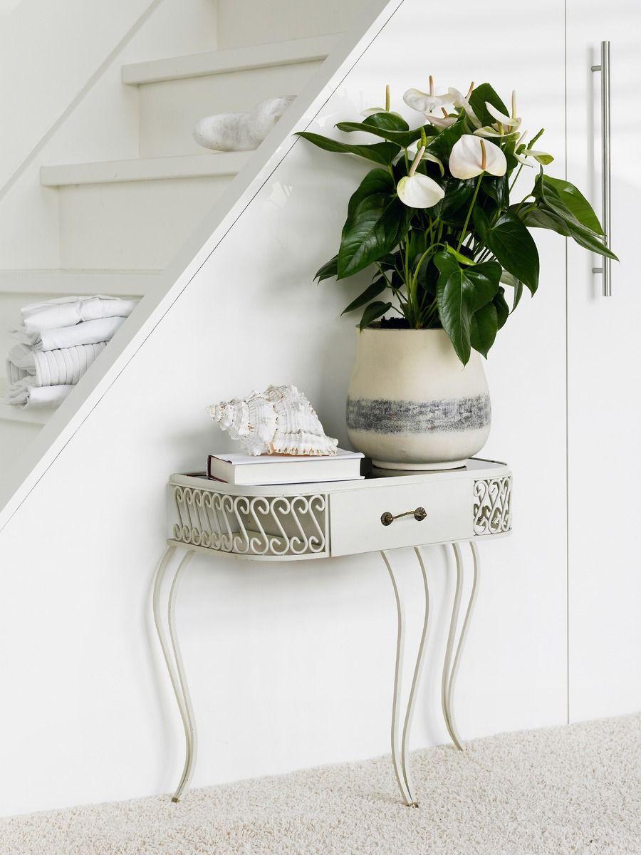 Plaats een witte anthurium in een witte pot voor een klassiek effect. #anthurium #potplant #interieur