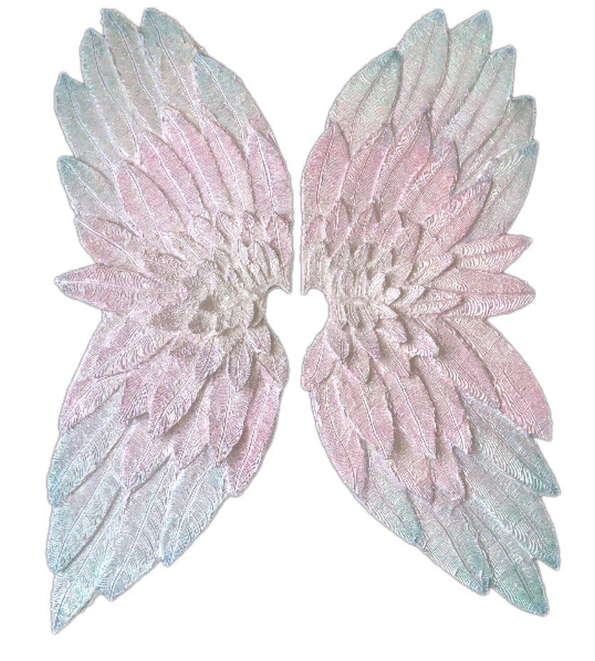 Looking back on some of the wings I made last year 💖 so sparkly 😍 . I am looking forward to showcasing the ones I am working on for my 2020 collection . . . . .