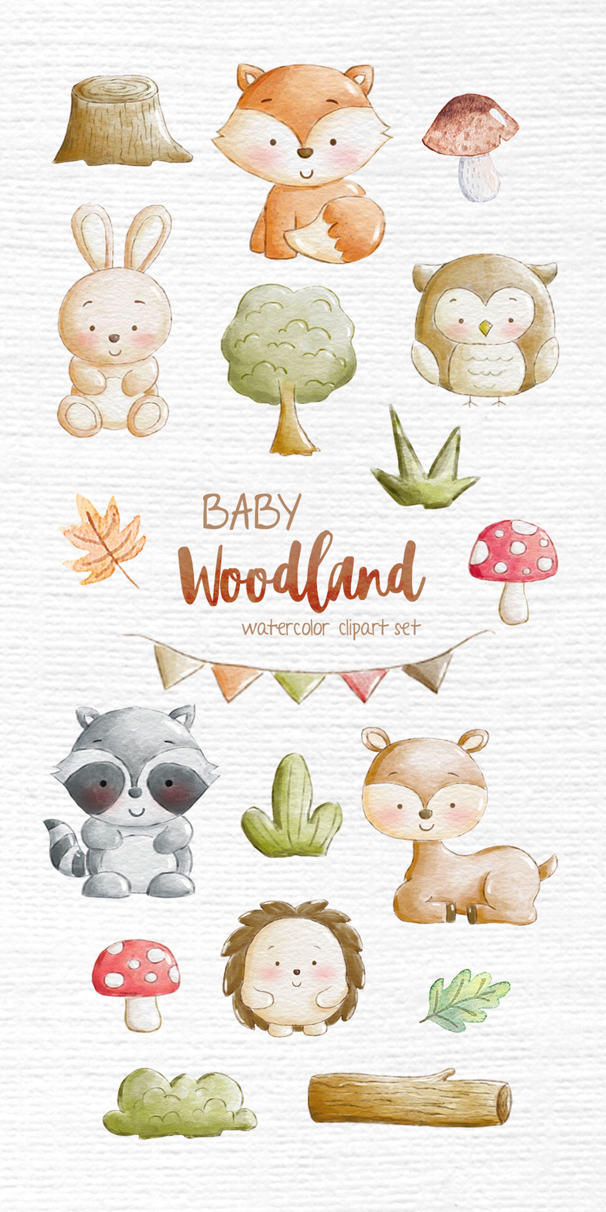 Woodland Animal Illustration Watercolor Clipart Nursery Forest Etsy Baby Art Animal Illustration Baby Illustration