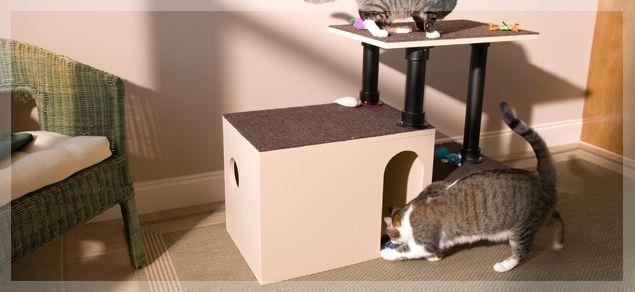 Cat Play House Diy