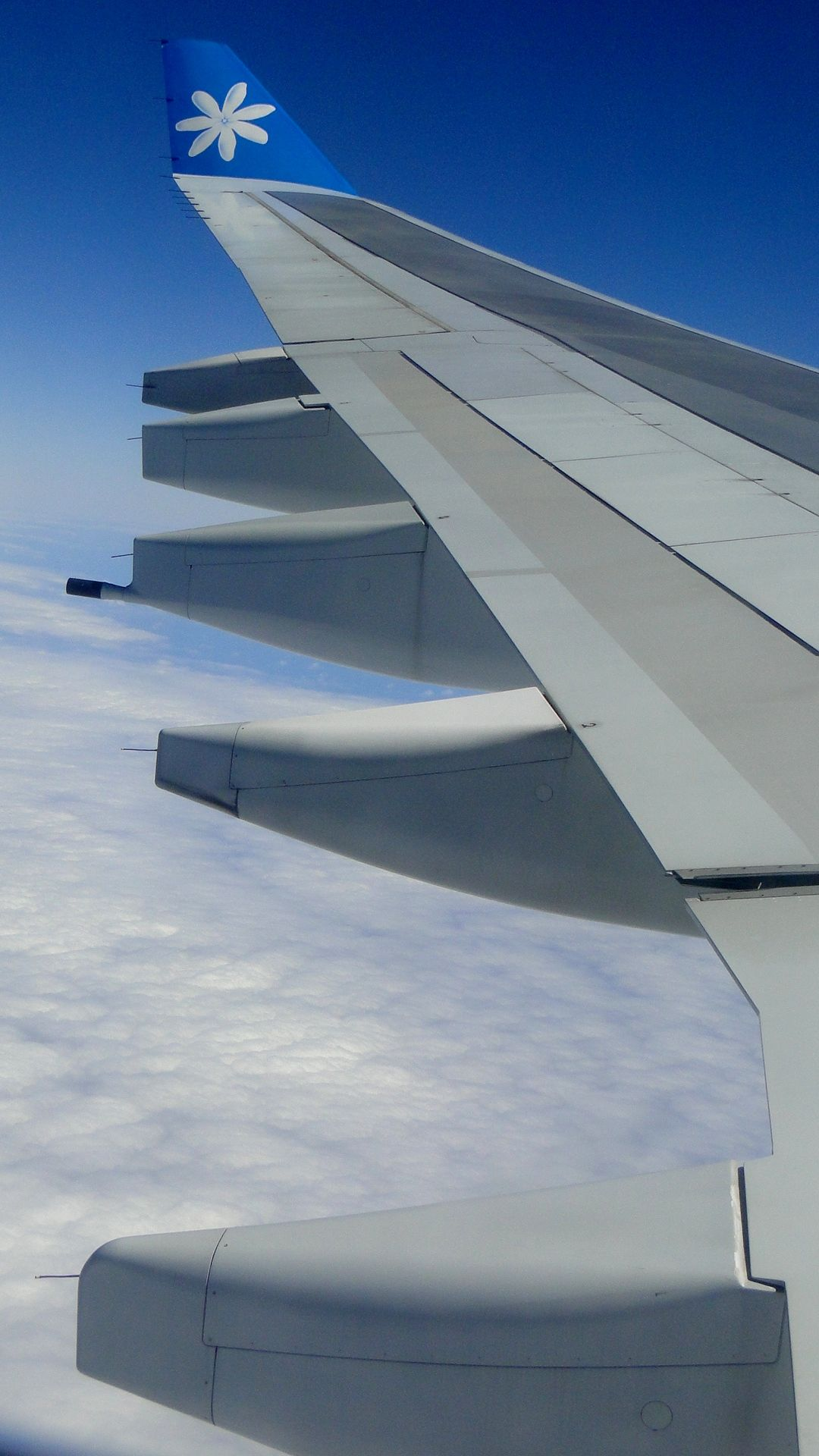 Pin on Air Tahiti Nui Aircraft