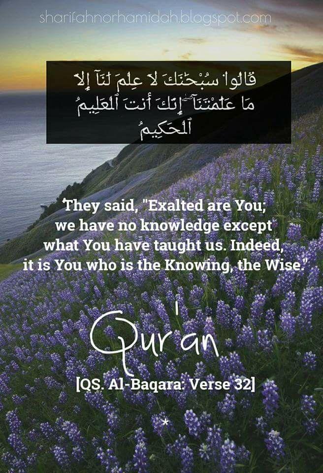 Surah Al-Baqarah #Quran 2:32 | Verses from the Holy Quran ... Quran Quotes In English