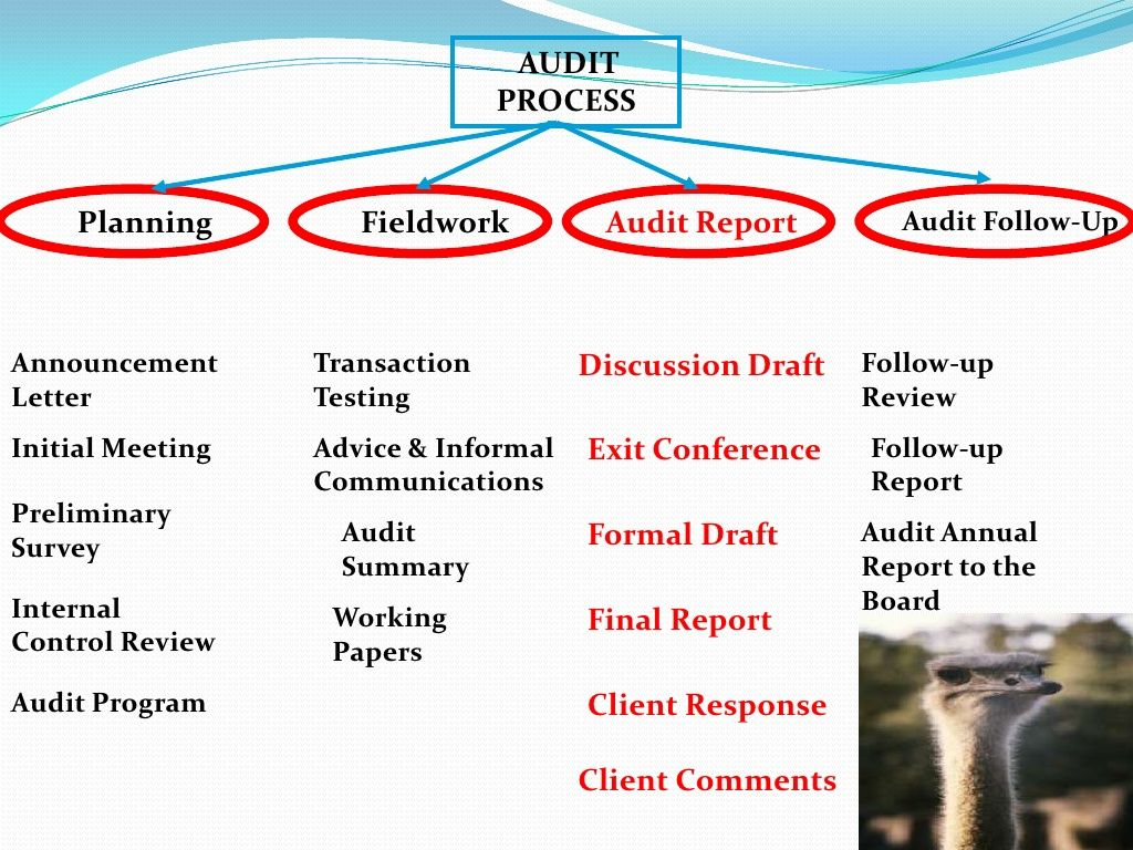 audit procedures A normal audit project performed by the university audit and consulting services  (internal audit) will follow the processes listed below.