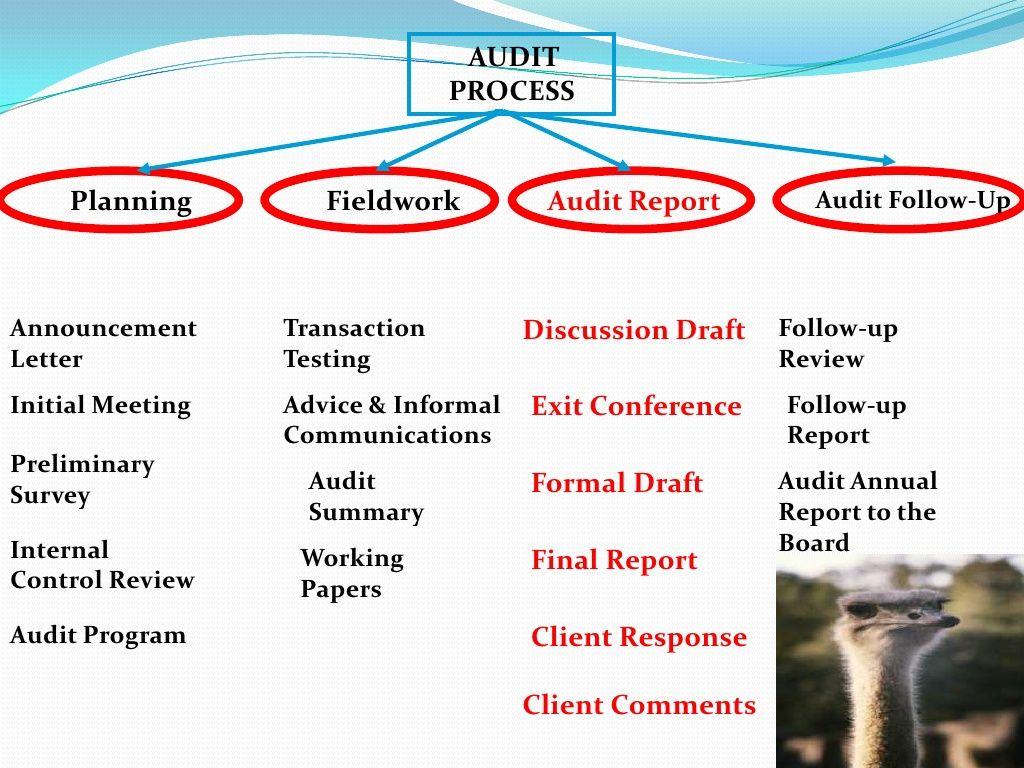 Slide 2 Of 30 Of Audit Process Audit Procedures Audit