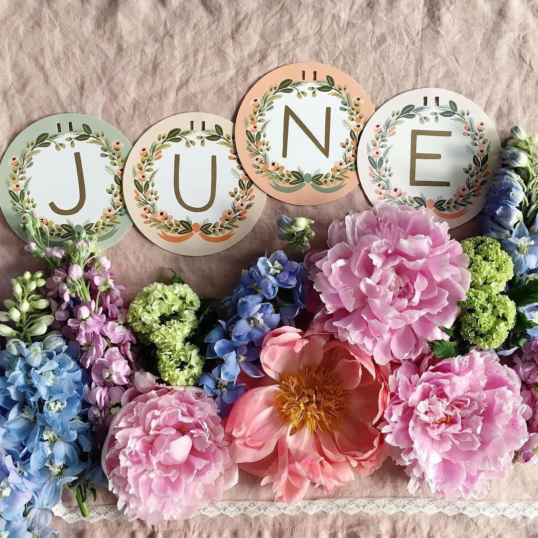 June Flowers: Hello June! Have The Most Wonderful Start To The New Month
