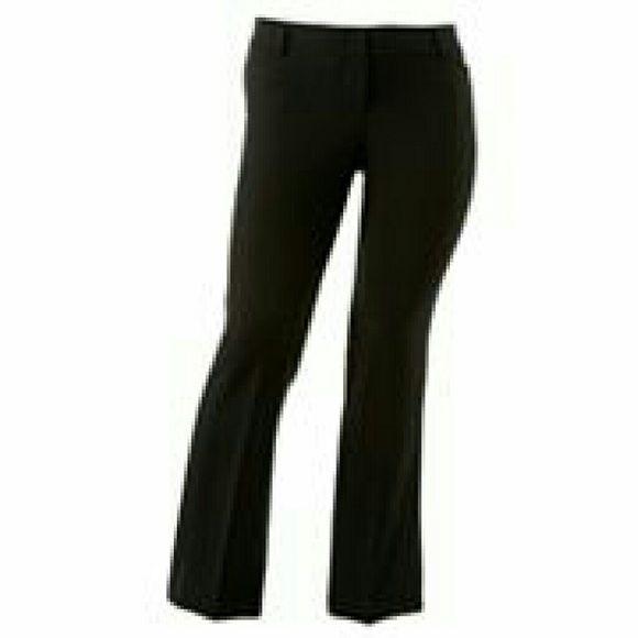 heartsoul plus Pants - Juniors plus black pants