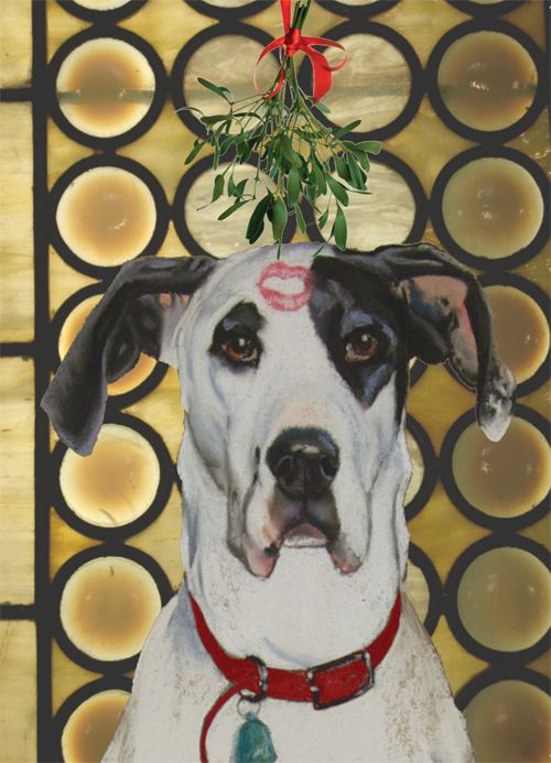 Merry Christmas Baby- Greeted Card. This great dane has a smooch on his head right under the mistletoe.
