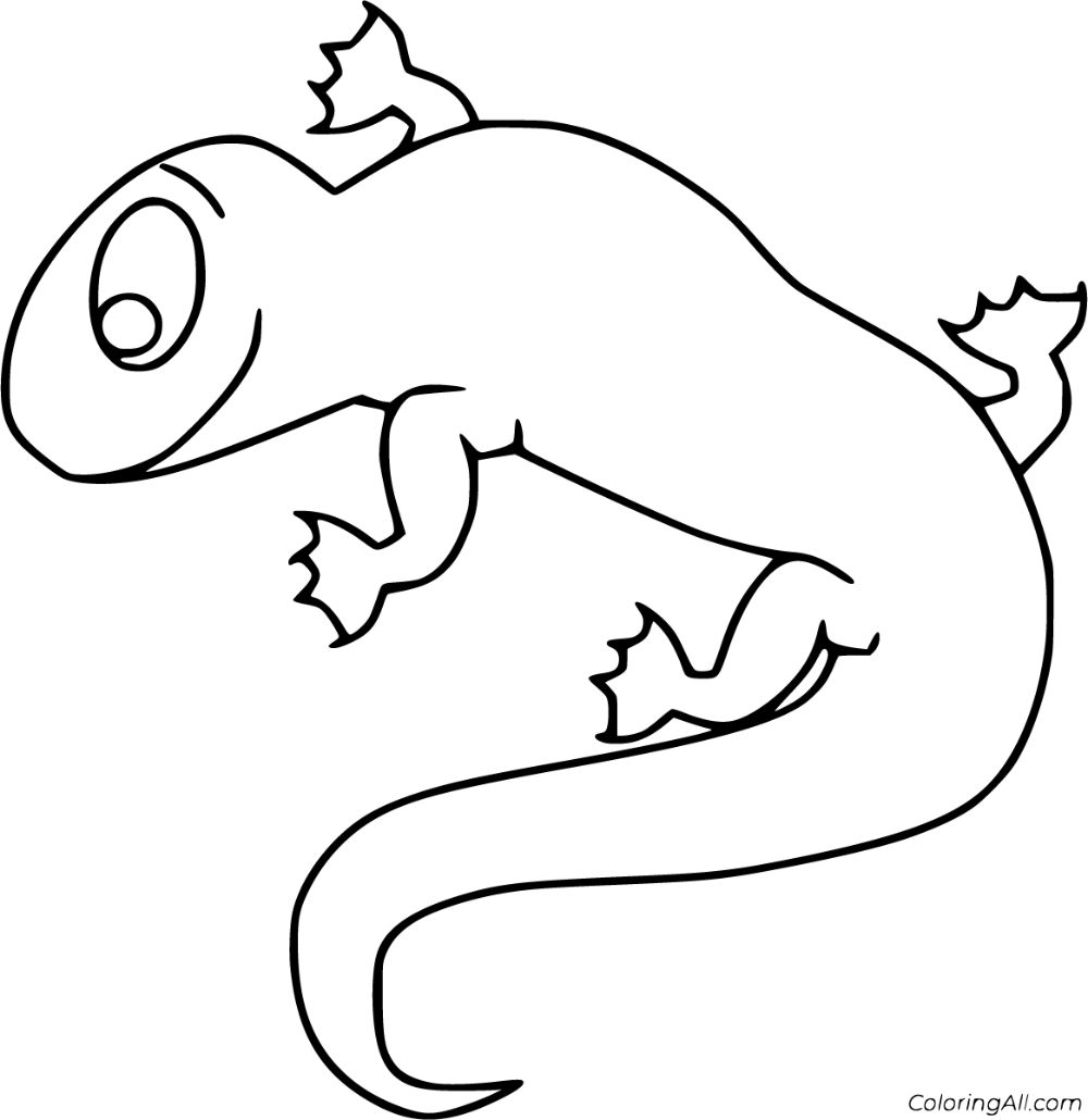 18 Free Printable Newt Coloring Pages In Vector Format Easy To Print From Any Device And Automatically Coloring Pages Animal Coloring Pages Animal Printables