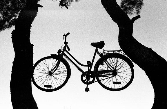 bike ride gone awry