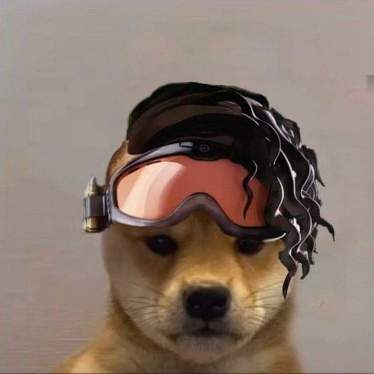 Pin By Strong On Apex Legends 7w7 Dog Icon Dog Memes Cute Animals