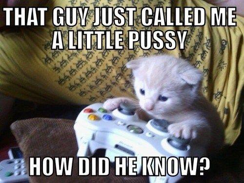 Fun Couple Meme : Gamer couple memes new pc i'm pretty sure i have a fresh copy