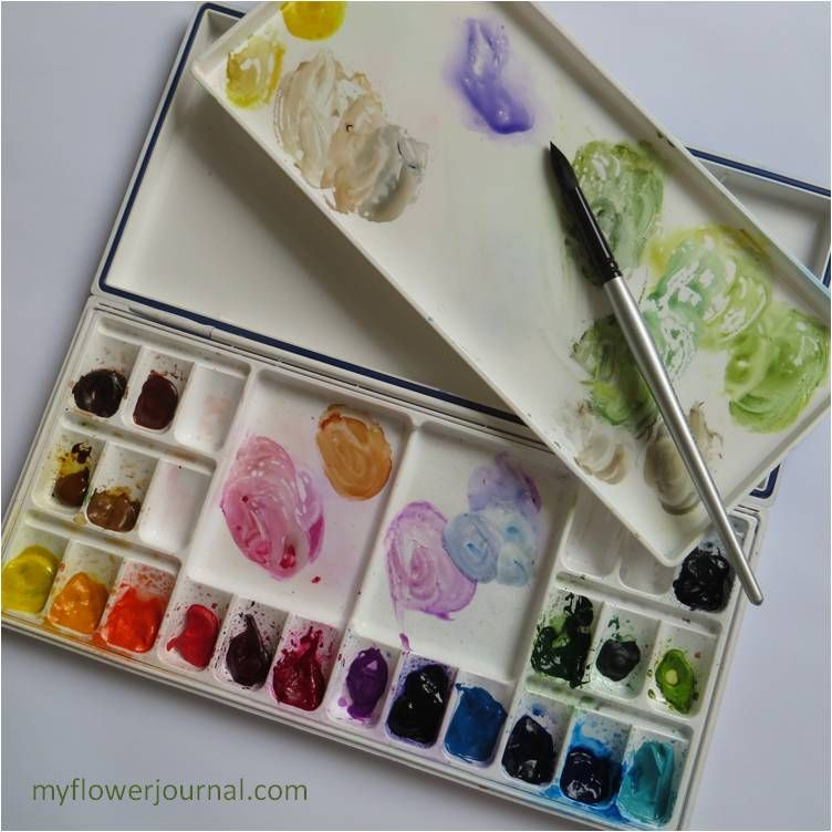 My Watercolor Paint Colors And Palette Watercolour Painting