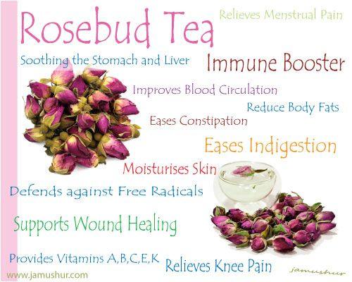 The Benefits Of Rosebud Tea Active Health Foundation Rose Buds Rose Tea Herbalism