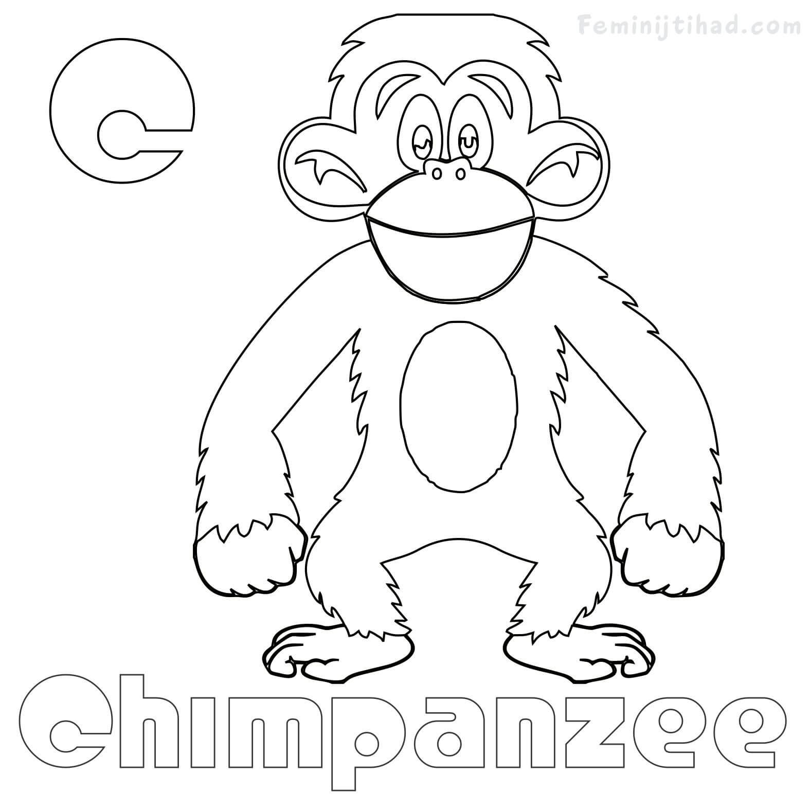 C For Chimpanzee Coloring Pages Animal Coloring Pages