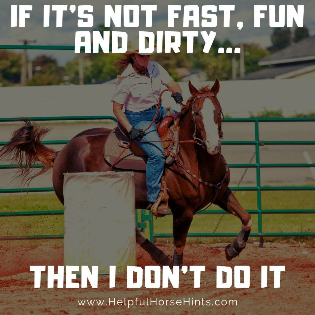 17 Remarkable Barrel Racing Quotes with Shareable Pictures | Helpful Horse Hints